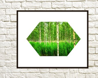 50% OFF SALE, Landscape Nature Photography, Instant Download, Printable Art