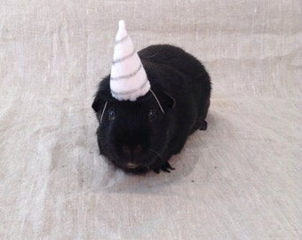 Unicorn Hat For Guinea Pigs