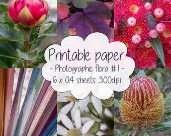 Printable paper: Photographic flora set #1
