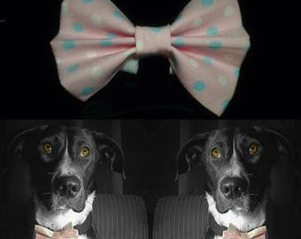 Spottypink Dog Bow Tie - Pink