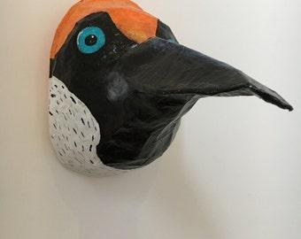 Paper mache Bird / Pecker / Siklebill animal head