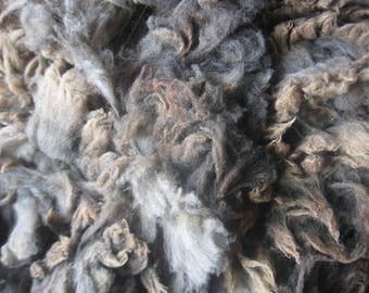 Jacob X lavender raw wool fleece