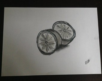 Charcoal SoftPastel Graphite Orange Fruit  Sketch Drawing A4