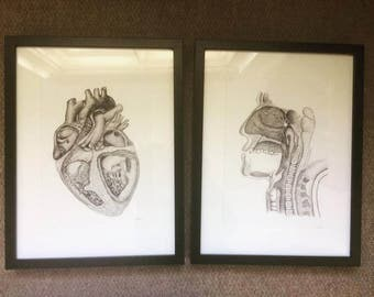 Framed Heart Illustration