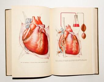 vintage surgery book anatomy book vintage medical gift doctors book vintage russian book medical school vintage dictionary anatomy medical