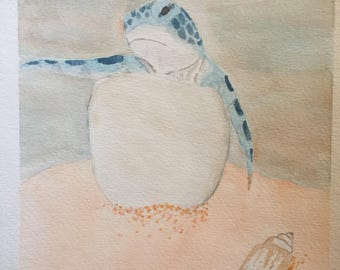 Green Turtle Hatchling (9x12in)