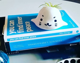 Seal planter, Animal Planter, 3D printed, gift, summer gift, home decor, sea lion, gardening, cute, adorable, Animal, flower, white