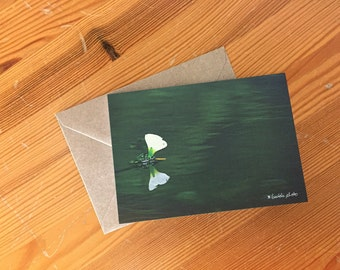 Greeting-card //  Flower on the Lake // A6