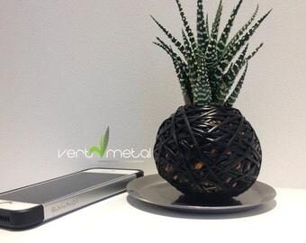 Black sphere plant kokedama style