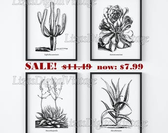 Black and white prints, Set of prints, Black and white wall art, Set of 4 botanical prints, Antique Botanical, Printable art, Download JPG