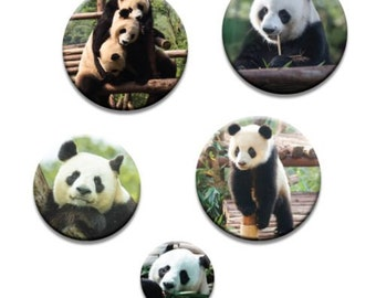 A pack of 5 Panda Pattern weights Ideal for weighing down patterns on delicate fabrics no need for pins TV sewing Bee