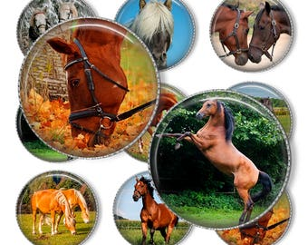 "1"" Horse Bottle cap images. Digital Collage Sheet. Circles for Jewelry Making. Instant download"