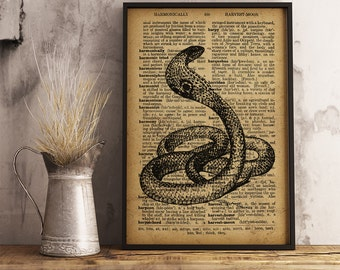 Cobra Poster, King Cobra Snake Print, Snake Dictionary Art Print, Cobra Snake scientific art print, Cabin decor, office decor (RS07)