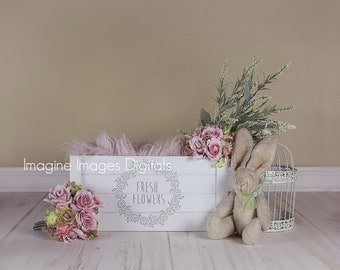 fresh flowers set of three back drops
