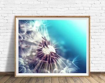 dandelion wall art dandelion print dandelion photography print bedroom decor botanical print nature photography floral blue nursery wall art