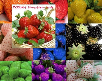 200 seeds, 10 different strawberry varieties climbing strawberry seeds, vegetable Fruit seeds
