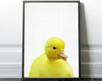 Animal Prints, Printable Duckling, Farm Wall Art, Animal Wall Art, Nursery Animal Print, Animal Photography, Duckling Artwork, Ducklings