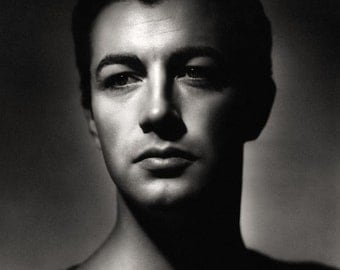 Robert Taylor Film Actor Movie Star Glossy Hollywood Black & White Photo Picture Print