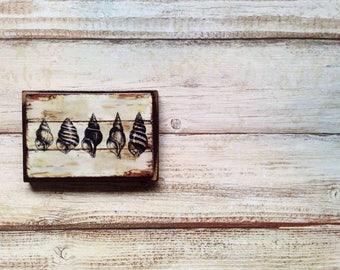 Seashells - Vintage Magnet