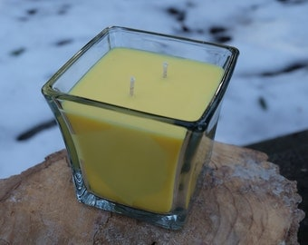 Coconut Mango Scented Soy Candle (12oz)
