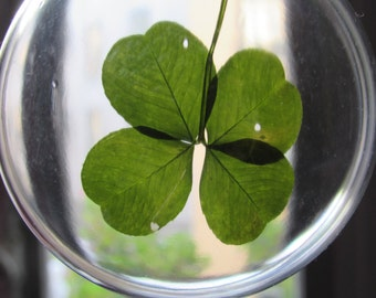 a very pretty in a transparent ball of Christmas 4 leaf clover!
