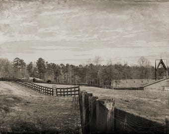 Country Tintype