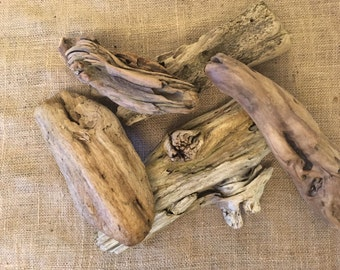 Driftwoood, 5 pieces perfect for jewelry display, taxidermy, coastal home decor or wedding decorations.