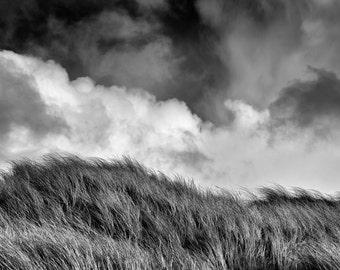 Windswept Grass, dunes, sea side, black and white, fine art, art print, photography, clouds, ocean, dune grass