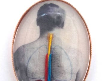 Brooch embroidered anatomical illustration 1900