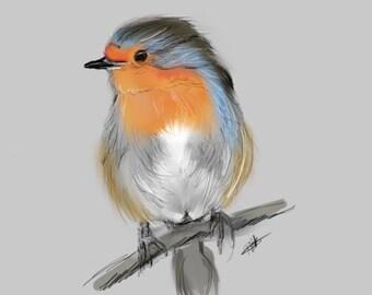 Robin-Print