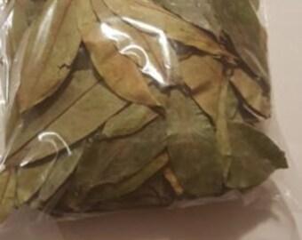 Leaves omura soursop Graviola Hojas de guanabana Pack 600 LEAVES 600 HOJAS