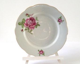 Unique and pretty diner plate(s)