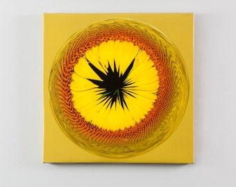 Sunflower Orbital Print on Canvas