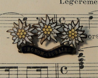 Antique French Enameled Thonon-Les-Bains, France Edelweiss Pin / Brooch c1920