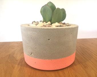 Large Concrete Planter/Pot