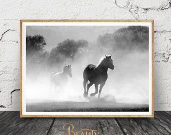 Equestrian Decor, Black Horse Art, Black Horse Print, Black Horse Poster, Black Horse Printable Art, Galloping Horses, Horse Wall Decor