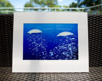 "Underwater Photography, Divers Bubbles, 16x20"" matted print, wall art, matted photo, 11x14 print, Underwater print, Ocean Photo"