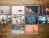 """Postkartenset """"Singularitäten"""", 10 verschiedene Motive"""