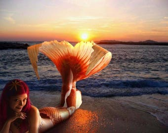 Mermaid tail silicone goldenfish