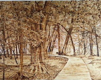 Forest , pyrography (woodburning ) art on pine board