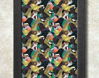 Garden Birds Pattern Poster Print A3+ 13 x 19 in - 33 x 48 cm  Buy 2 get 1 FREE