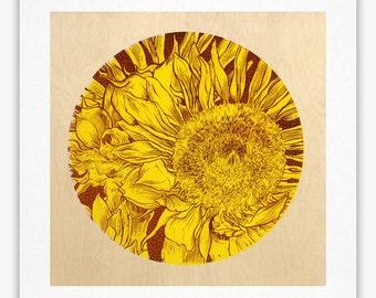 Sunflower - Giclée Print