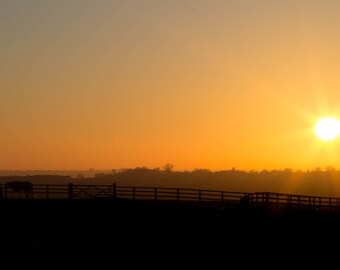 Sunset Photo Print (8x10)