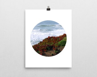 Ocean Succulent Geometric Circle Print (Unframed) **FREE SHIPPING**