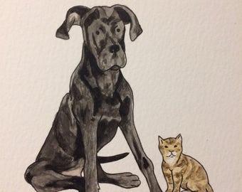 Custom Illustration Watercolour Pet Portrait