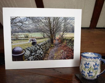 "A mounted 12""x 8"" photo of my favourite footpath together with an A6 Card/notelet with a small photograph by Jack By The Hedge."