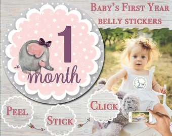 Elephant Month Stickers Monthly Stickers Baby Girl Shower Gift Milestone Stickers Infant Growth Stickers First Year Stickers Photo Props