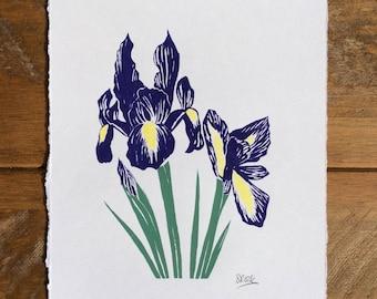 Purple Iris Screen Print. Hand-pulled. Original Design
