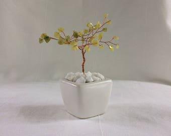 New Jade Wire Tree