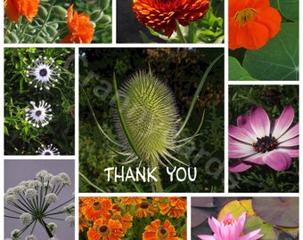 """Pack of 4 Photo """"Thank You"""" Cards """"Flower Collage"""" 140mm Square Blank Greetings Cards"""